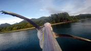Kamera GoPro na dziobie pelikana