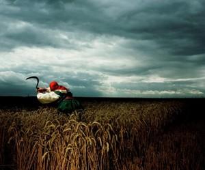 Charytatywna aukcja wszystkich fotografii z wystawy Briana Griffina