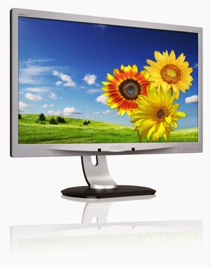 23-calowy monitor Philips na USB z matrycą IPS