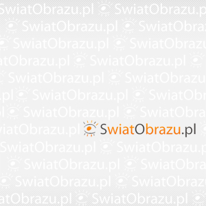 Polska jest piękna - wybrane zdjęcia konkursowe