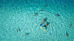 Drone Aerial Photography 2015 – zwycięskie zdjęcia konkursu Dronestagram i National Geographic