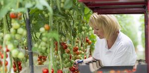 Jak rolnictwo zadba o bezpieczeństwo żywnościowe w przyszłości - konkurs fotograficzny