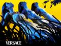 Steven Meisel fotografuje dla Versace
