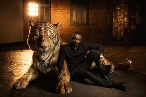 Księga dżungli - aktorzy i zwierzęta na fantastycznych CGI