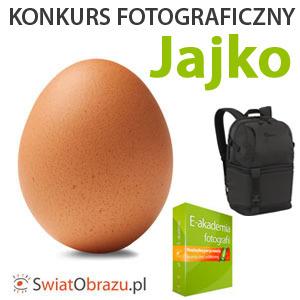 Mija termin nadsyłania zdjęć na konkurs fotograficzny Jajko