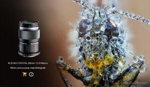 Letnia oferta Olympus: odbierz bonus za zakup aparatów OM-D i obiektywów M.ZUIKO