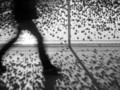 23 wskazówki Thomasa Leutharda - fotografia uliczna