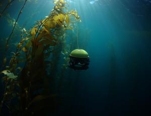 SeaDrone - podwodny dron