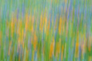 Fotografia abstrakcyjna i panoramowanie