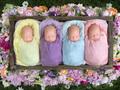 Czworaczki w ogrodzie - niezwykła sesja z czterema identycznymi siostrami