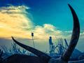 Afryka w drodze. Wystawa fotografii Marcina Kydryńskiego