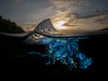 Nad i pod - fascynujące zdjęcia Matty Smitha
