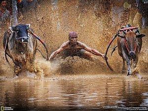 Otwarty konkurs fotografii przyrodniczej NG – konkurencja jest ogromna