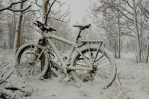 Jukon - rowerem przez północnokanadyjską zimę
