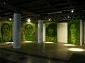 Portrety wywoływane na trawie