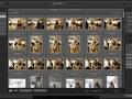 Lightroom Classic CC: import i eksport zdjęć w praktyce