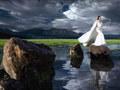 Kulisy porywającej sesji zdjęciowej - Sails Chong fotografuje modę ślubną