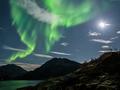 Zachwycające zdjęcie zorzy polarnej na tle rozświetlonego przez Księżyc nieba