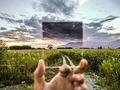 Fotografia od A do Z: Filtry fotograficzne