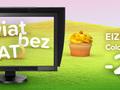 Zobacz świat bez wad - promocja Eizo ColorEdge CG277