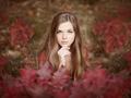 Kolory jesieni - najpiękniejsze fotografie