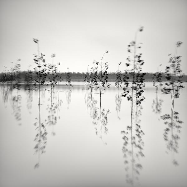 Pierre Pellegrini krajobrazy