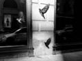 Najwspanialszą rzeczą w street photo jest budzenie się każdego dnia z tajemnicą, co tym razem uda sięuchwycić