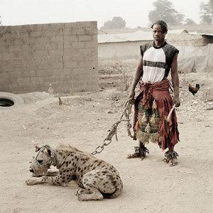 Ludzie i hieny. Zdjęcia Pietera Hugo