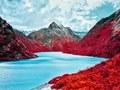 Fotografia krajobrazowa jak kolorowe sny o słodyczach