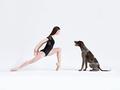 Niezwykła ekspresja tancerzy i psów - zobacz galeriępełnąenergii