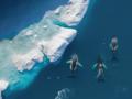 Konkurs fotograficzny SkyPixel Aerial Photo&Video - świetna podniebne zdjęcia