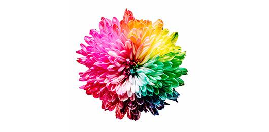 Świat kolorów 2020 - konkurs fotograficzny