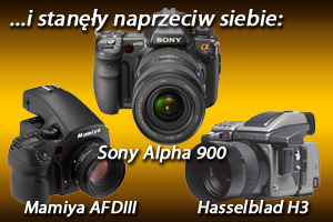 ... and they compared to one another: Hasselblad H3, Mamiya AFDIII, Sony Alpha 900 - comparative test