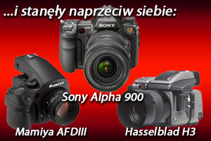 Spisek... Hasselblad H3, Mamiya AFDIII, Sony Alpha 900 - test porównawczy, część II